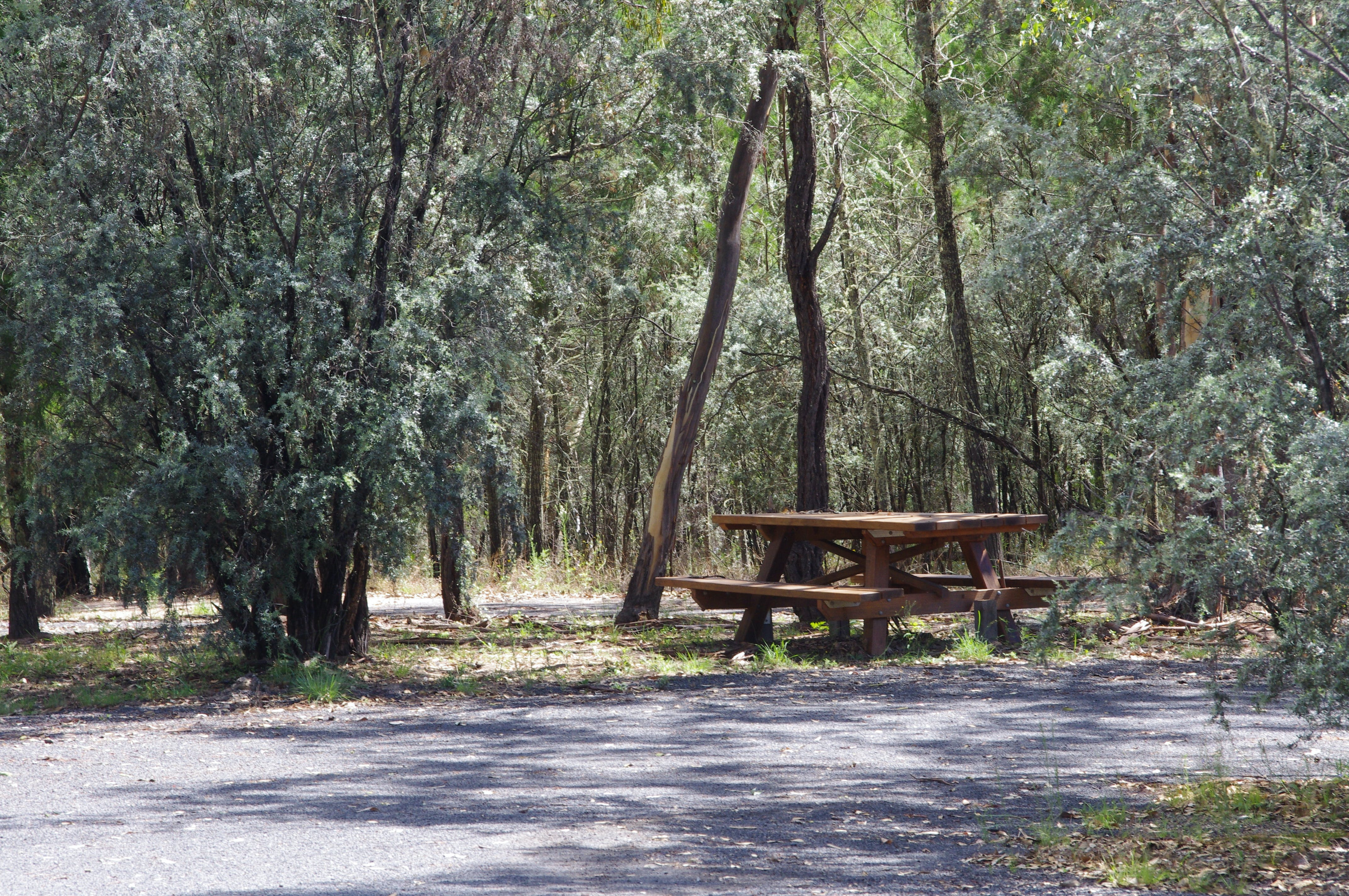 Goonoowigall State Conservation Area - Accommodation Coffs Harbour