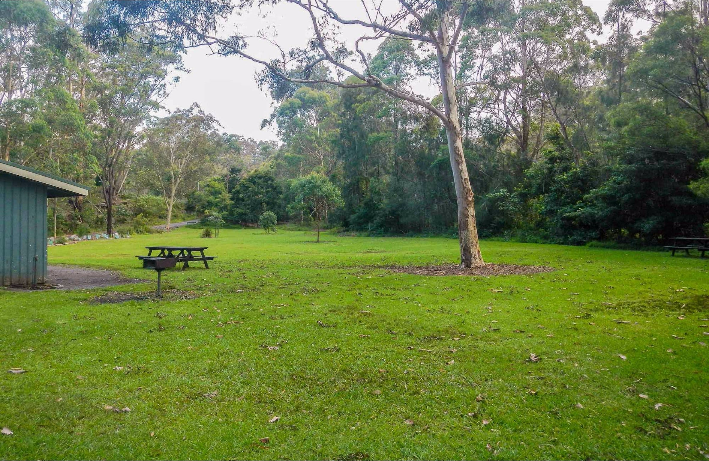 Haynes Flat picnic area - Accommodation Coffs Harbour
