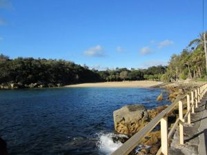 Shelly Beach Manly - Accommodation Coffs Harbour
