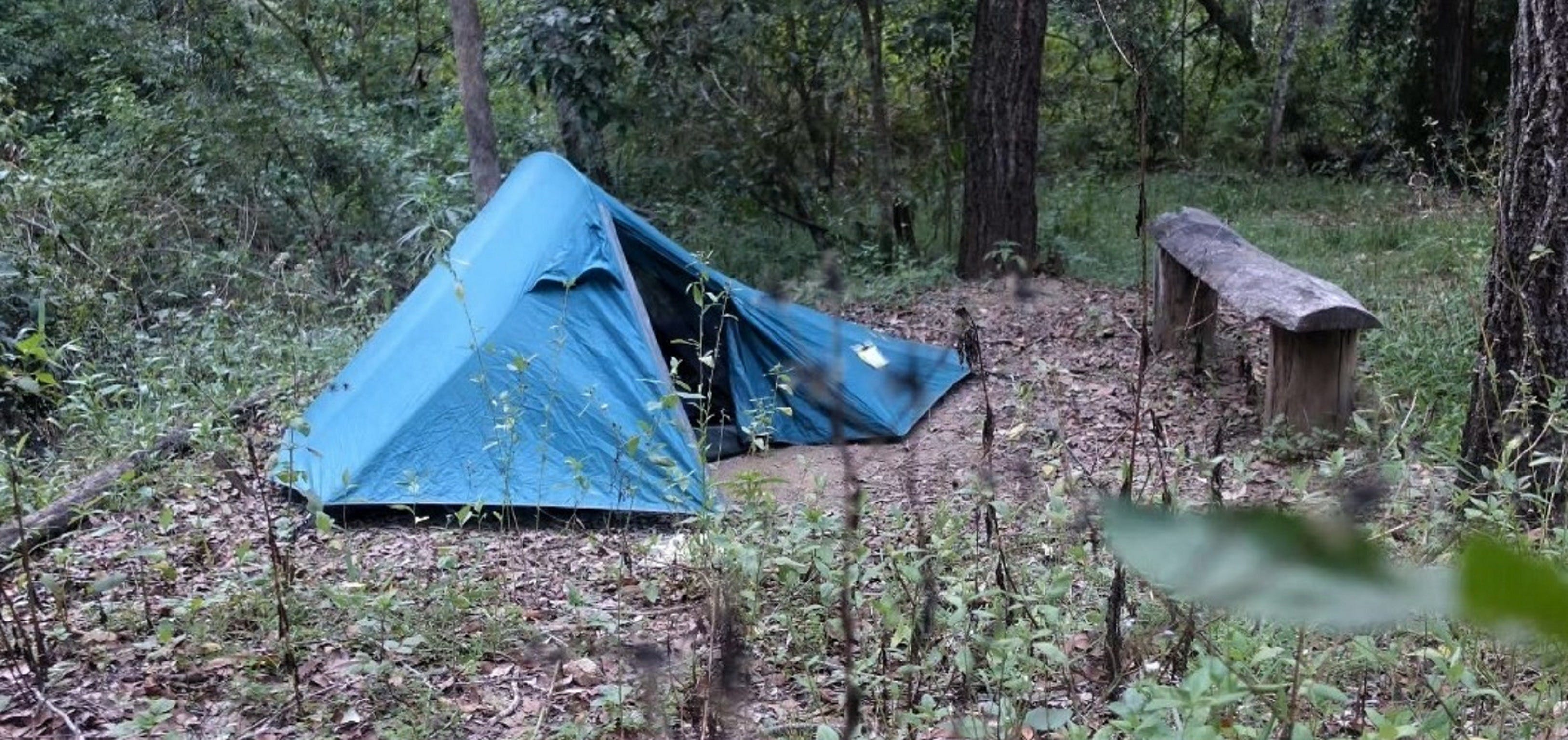 England Creek Bush Camp - Accommodation Coffs Harbour