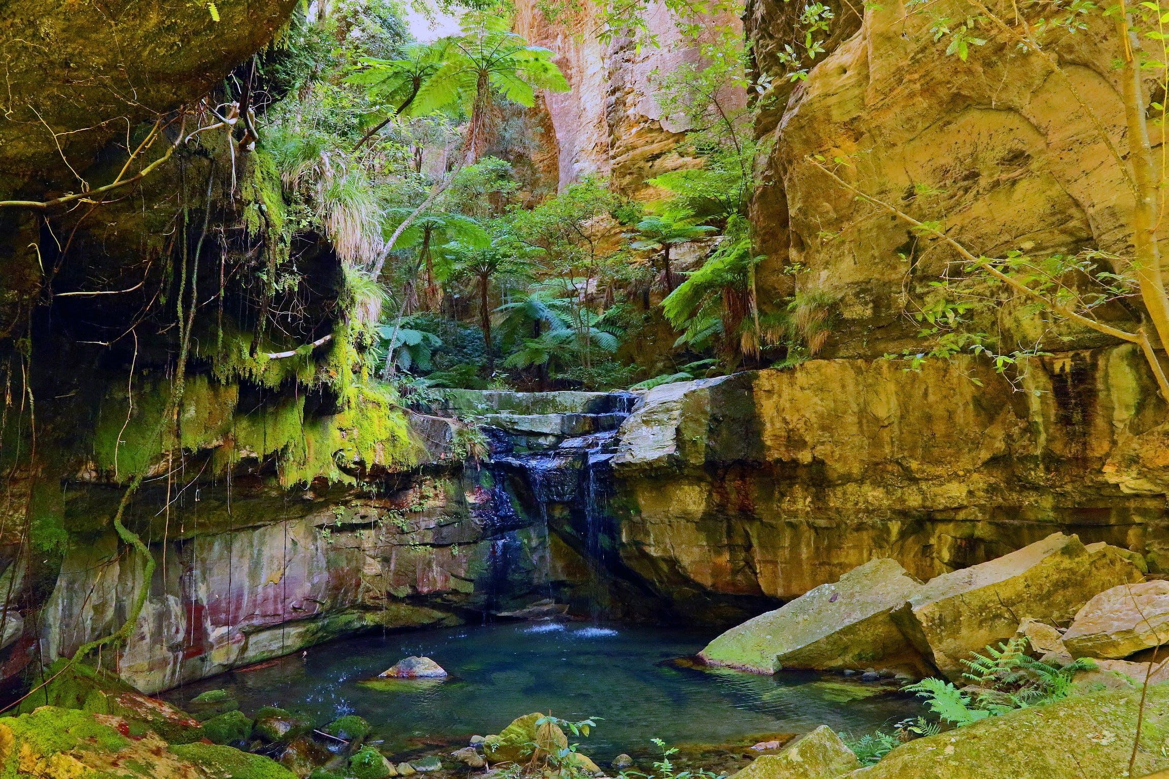 Glimpse of the Outback 5 Day Tour - Roma and Surrounds - Accommodation Coffs Harbour