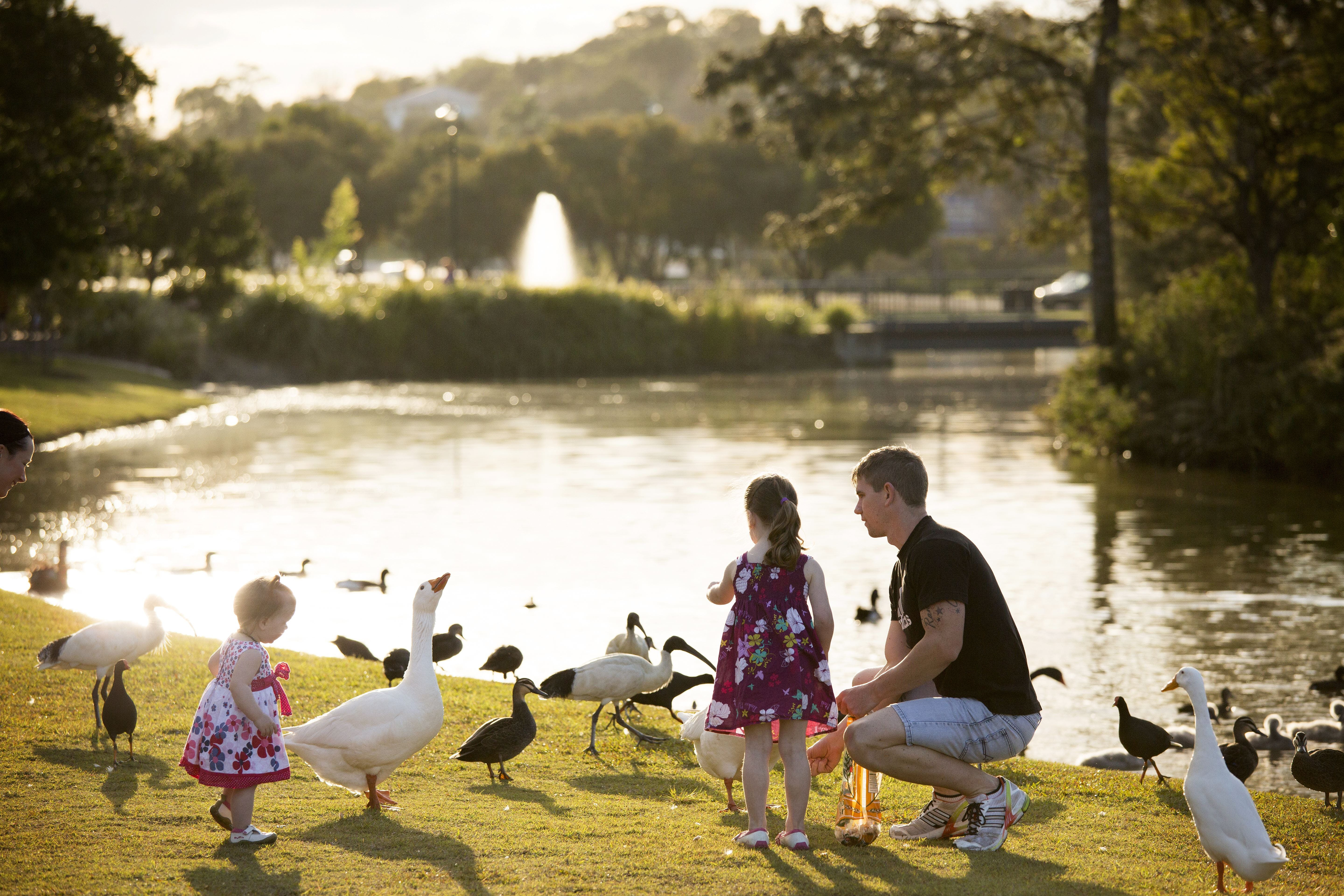 Lake Alford Recreational Park - Accommodation Coffs Harbour