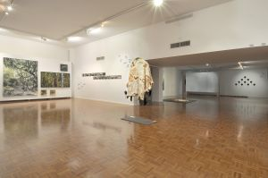 Noosa Regional Gallery - Accommodation Coffs Harbour
