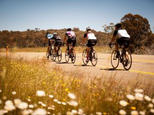 7 Peaks Ride - Dinner Plain - Accommodation Coffs Harbour