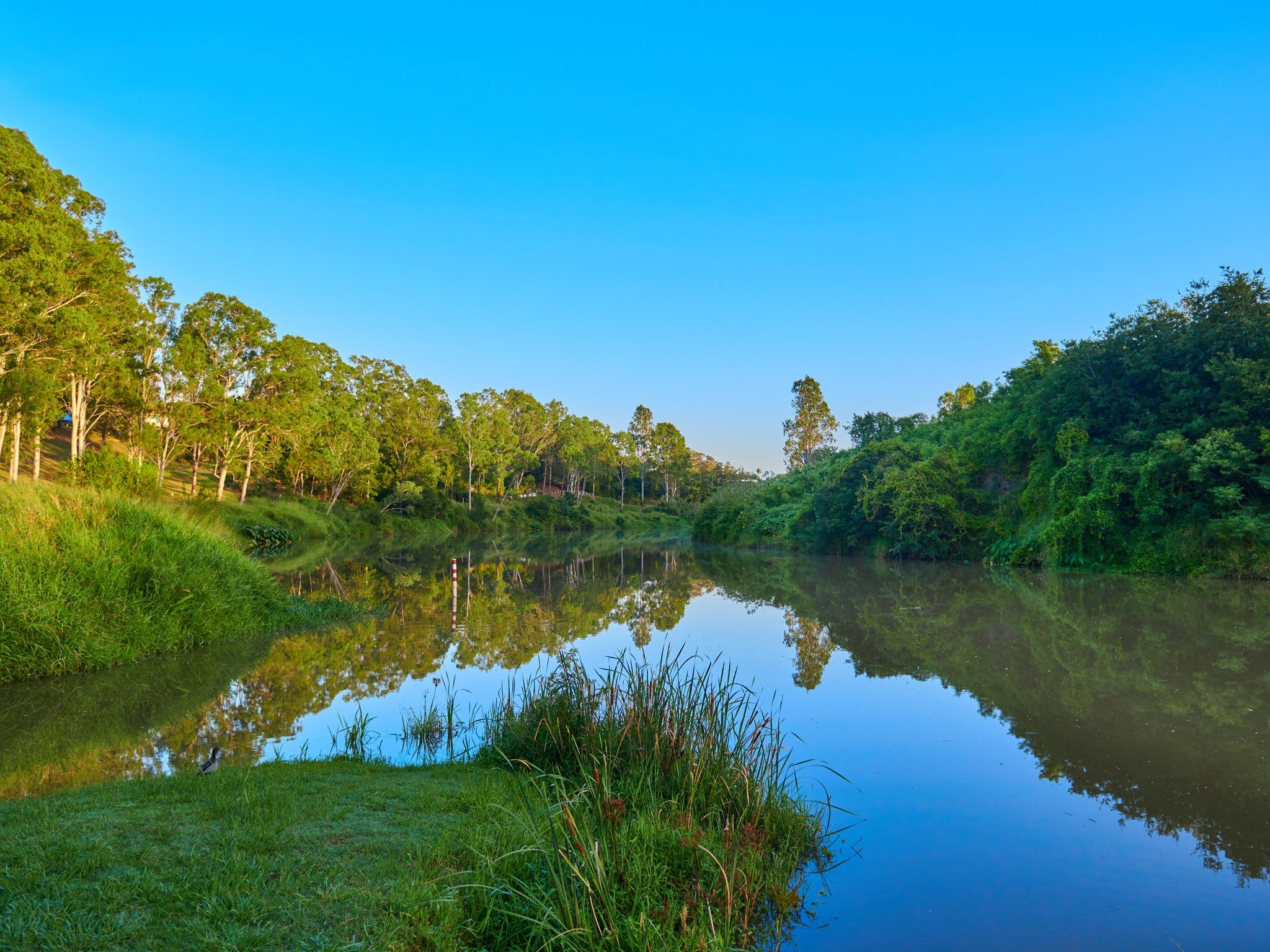 Cribb Park - Accommodation Coffs Harbour