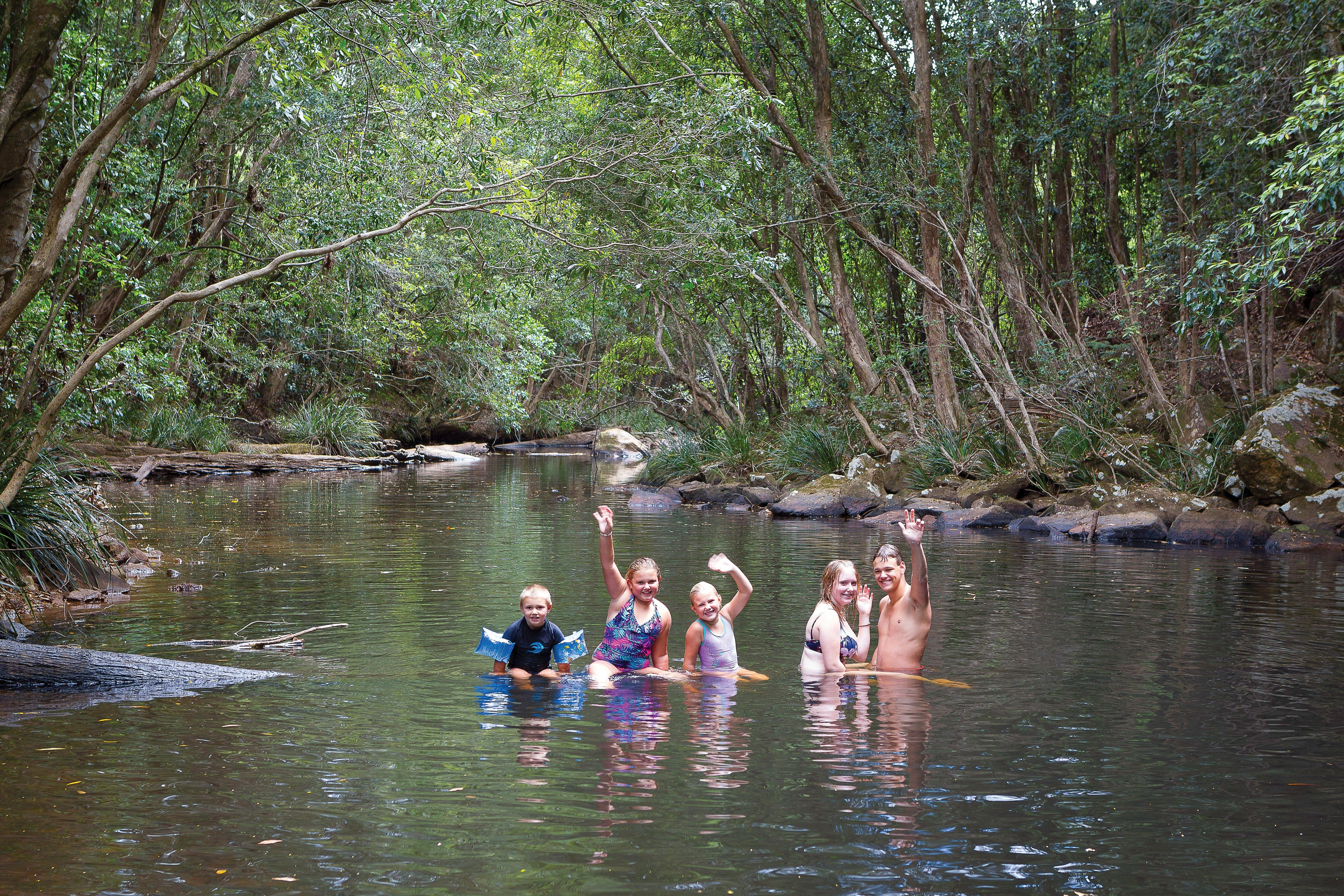Kerewong State Forest - Accommodation Coffs Harbour