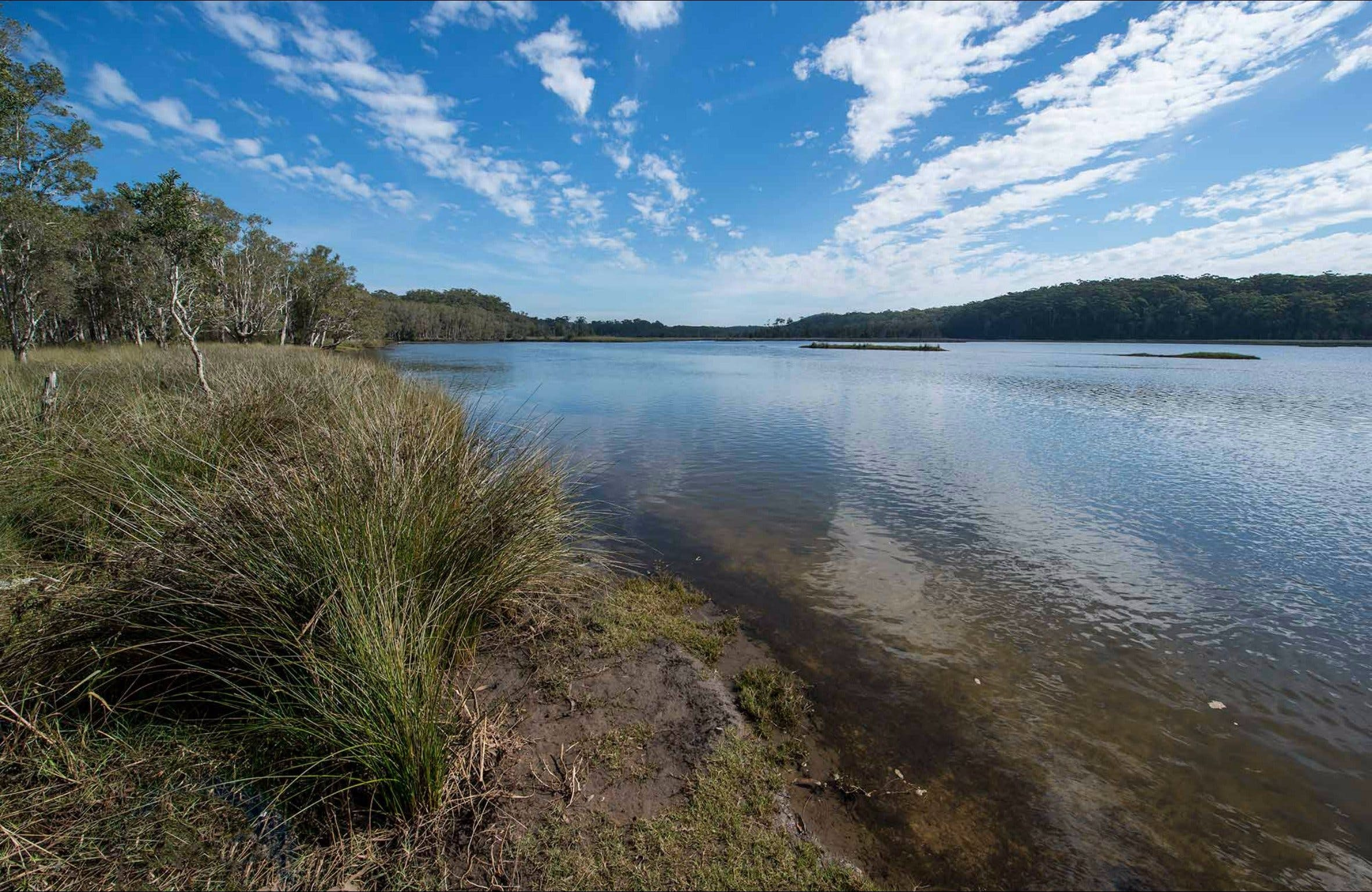 Lake Innes Nature Reserve - Accommodation Coffs Harbour