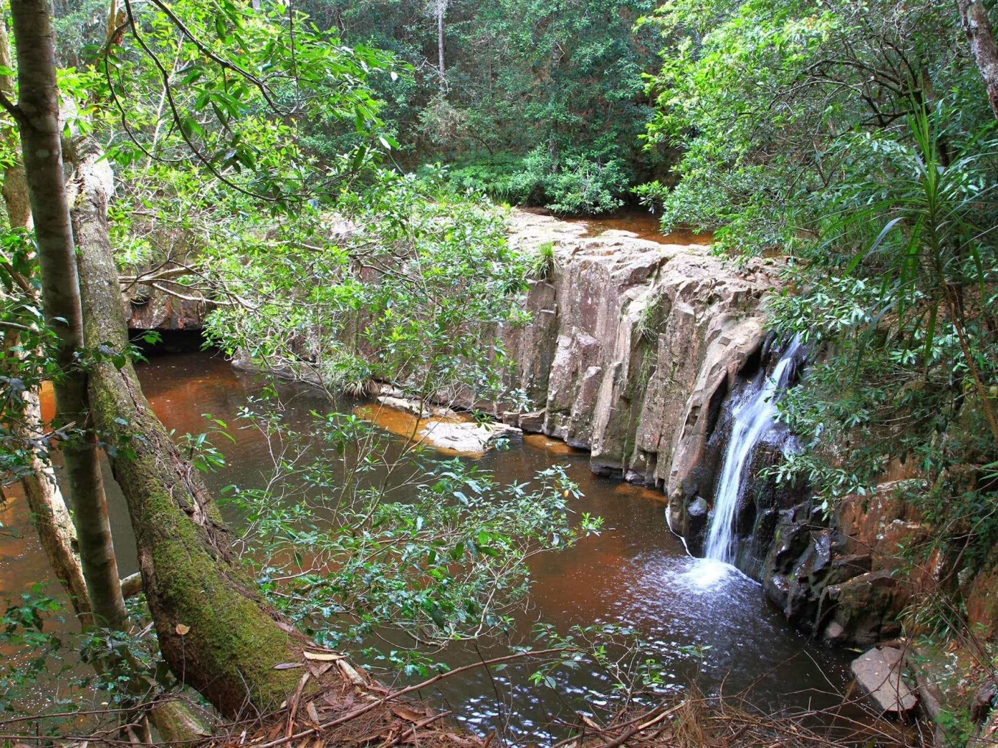 Waitui Falls - Accommodation Coffs Harbour