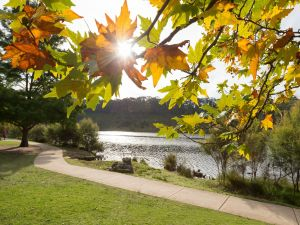 Wentworth Falls Lake - Accommodation Coffs Harbour