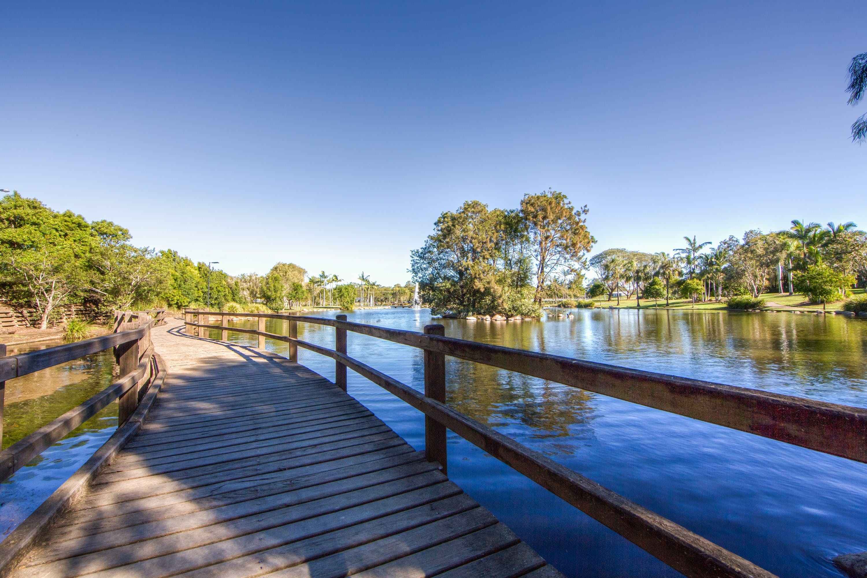Centenary Lakes Park - Accommodation Coffs Harbour