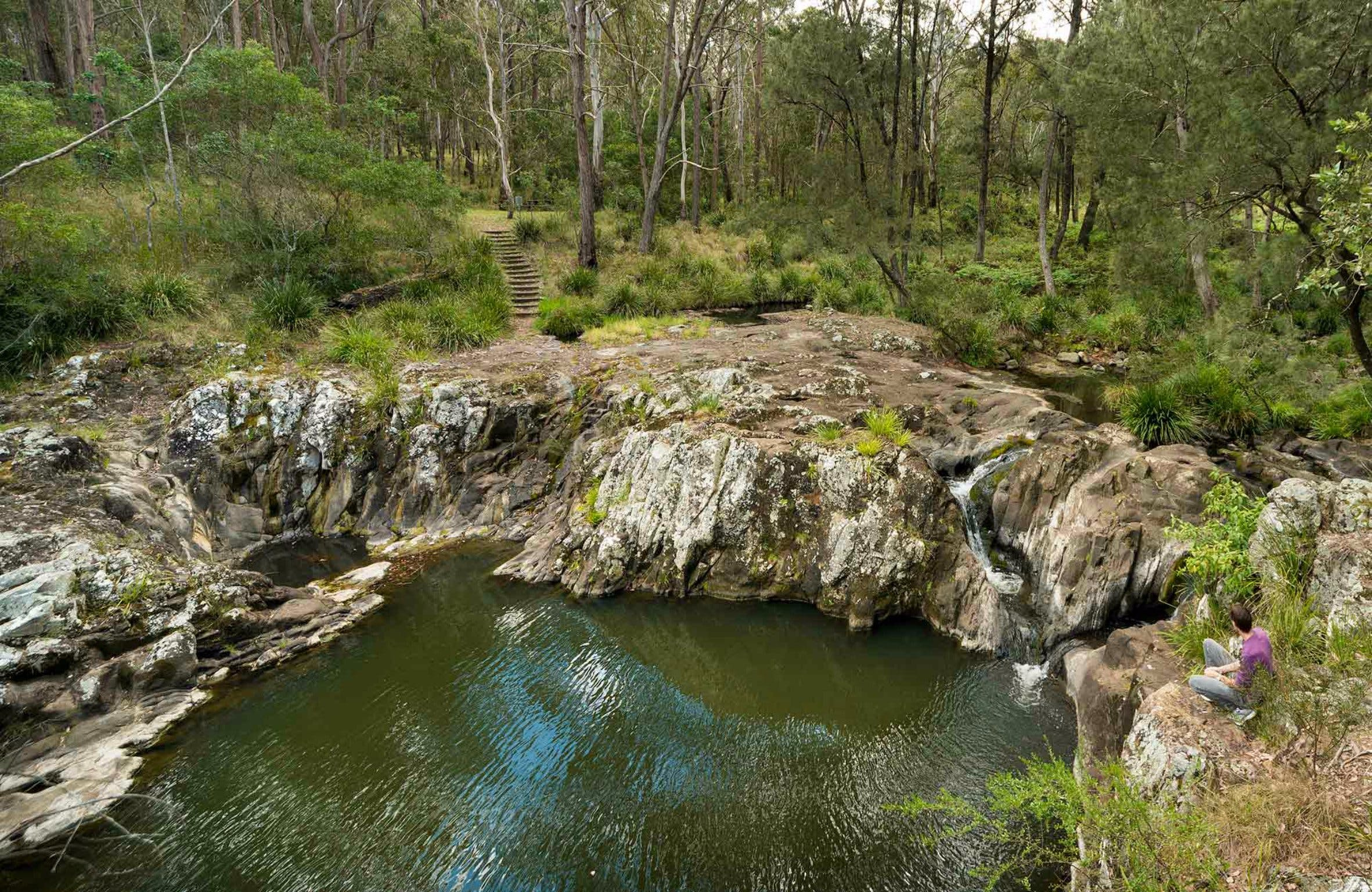 Gorge Walking Track - Accommodation Coffs Harbour