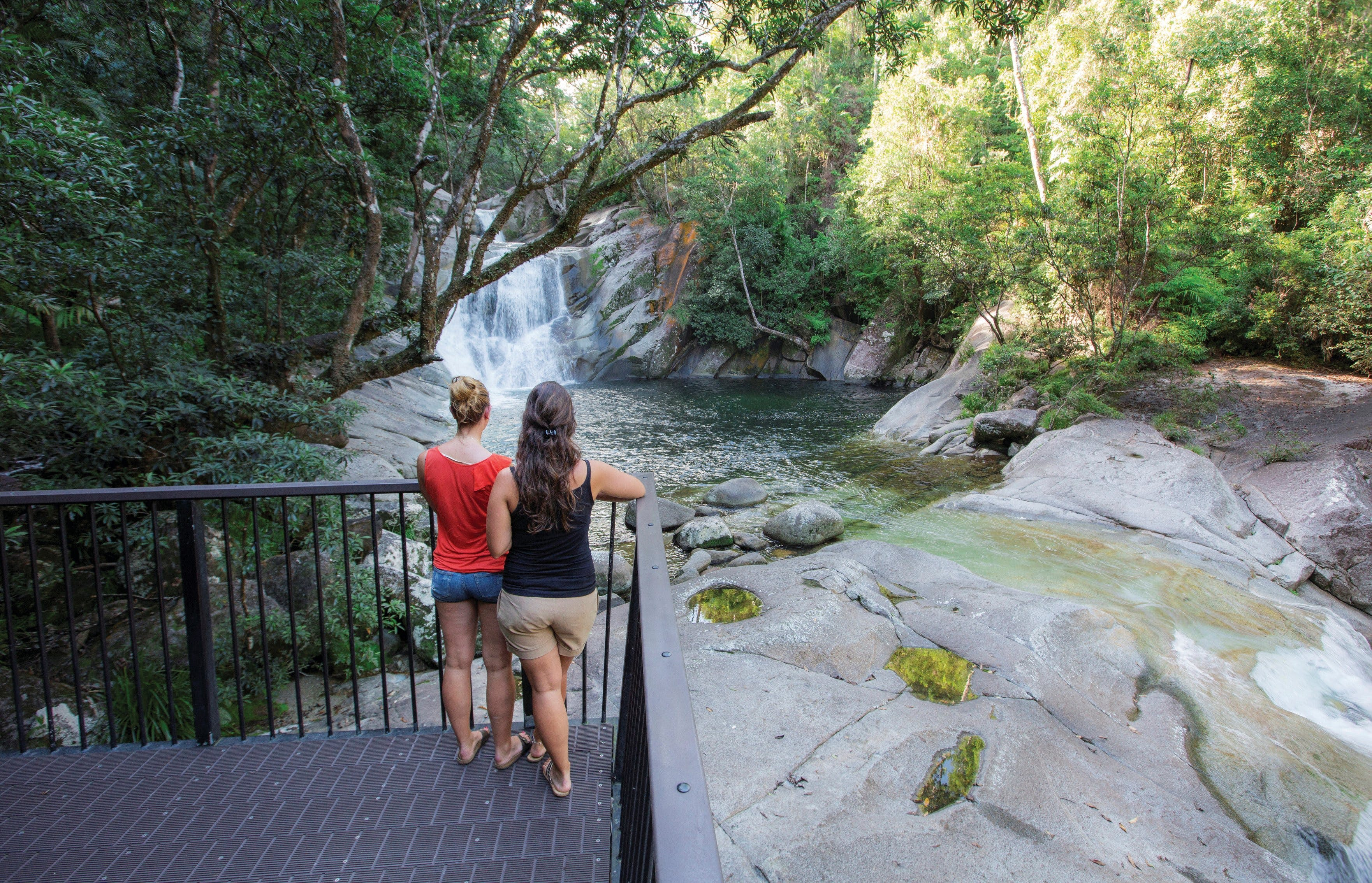 Josephine Falls walking track Wooroonooran National Park - Accommodation Coffs Harbour