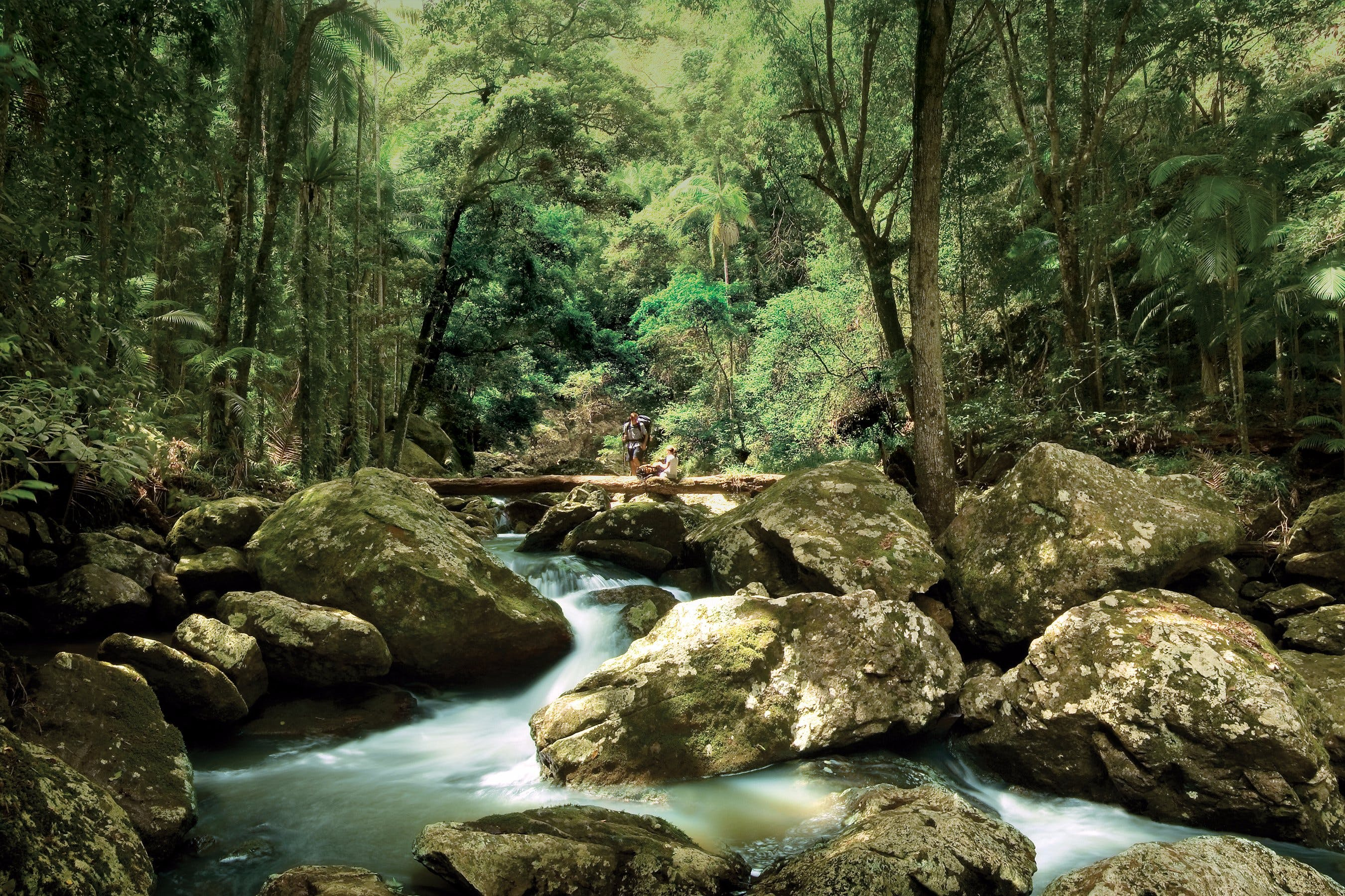 Maleny - Accommodation Coffs Harbour