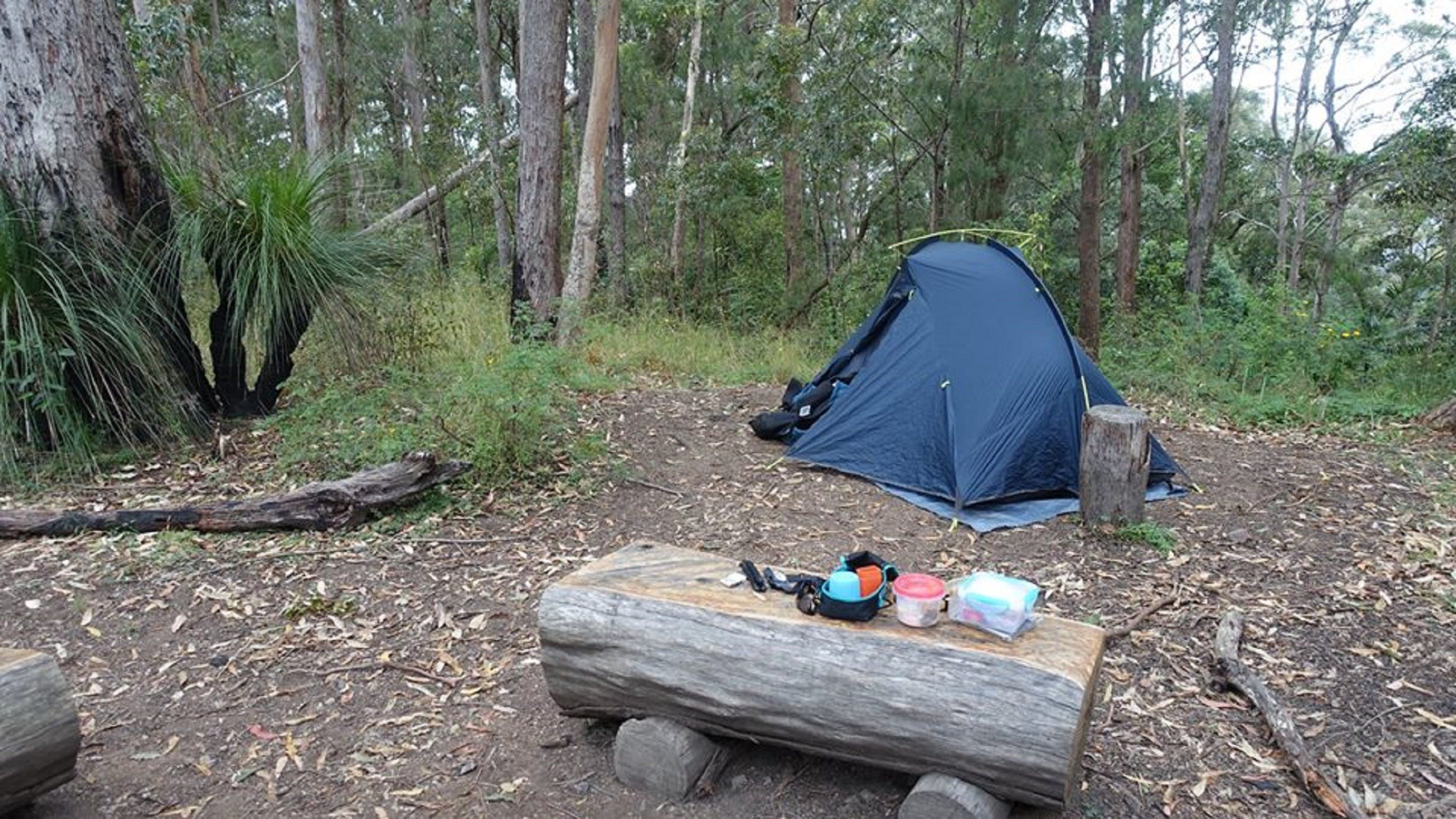 Northbrook Mountain Bush Camp - Accommodation Coffs Harbour