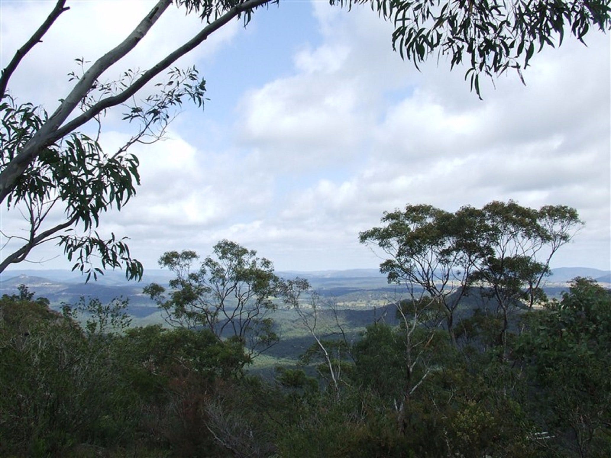 Nullo Mountain - Accommodation Coffs Harbour