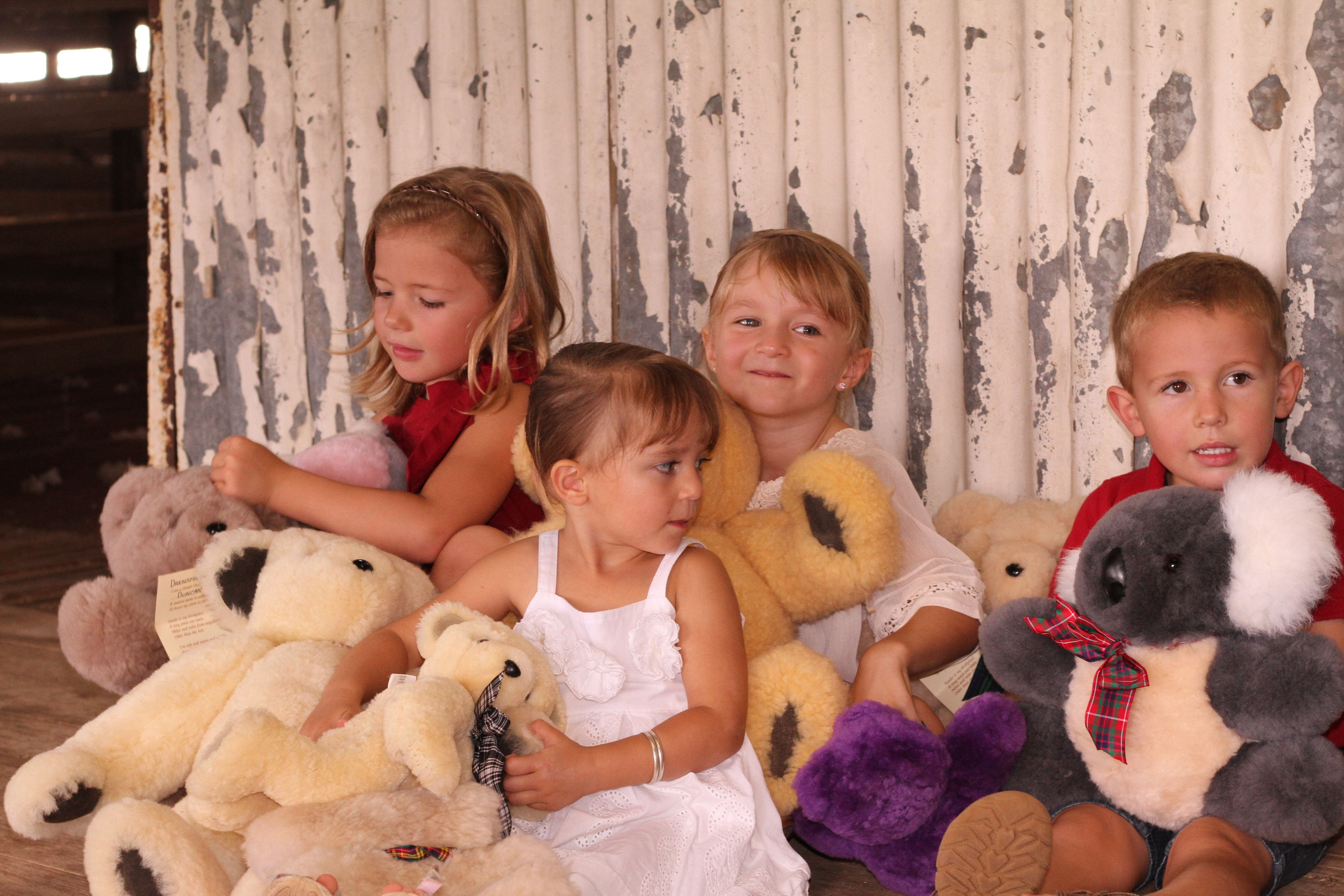 Tambo Teddies - Accommodation Coffs Harbour