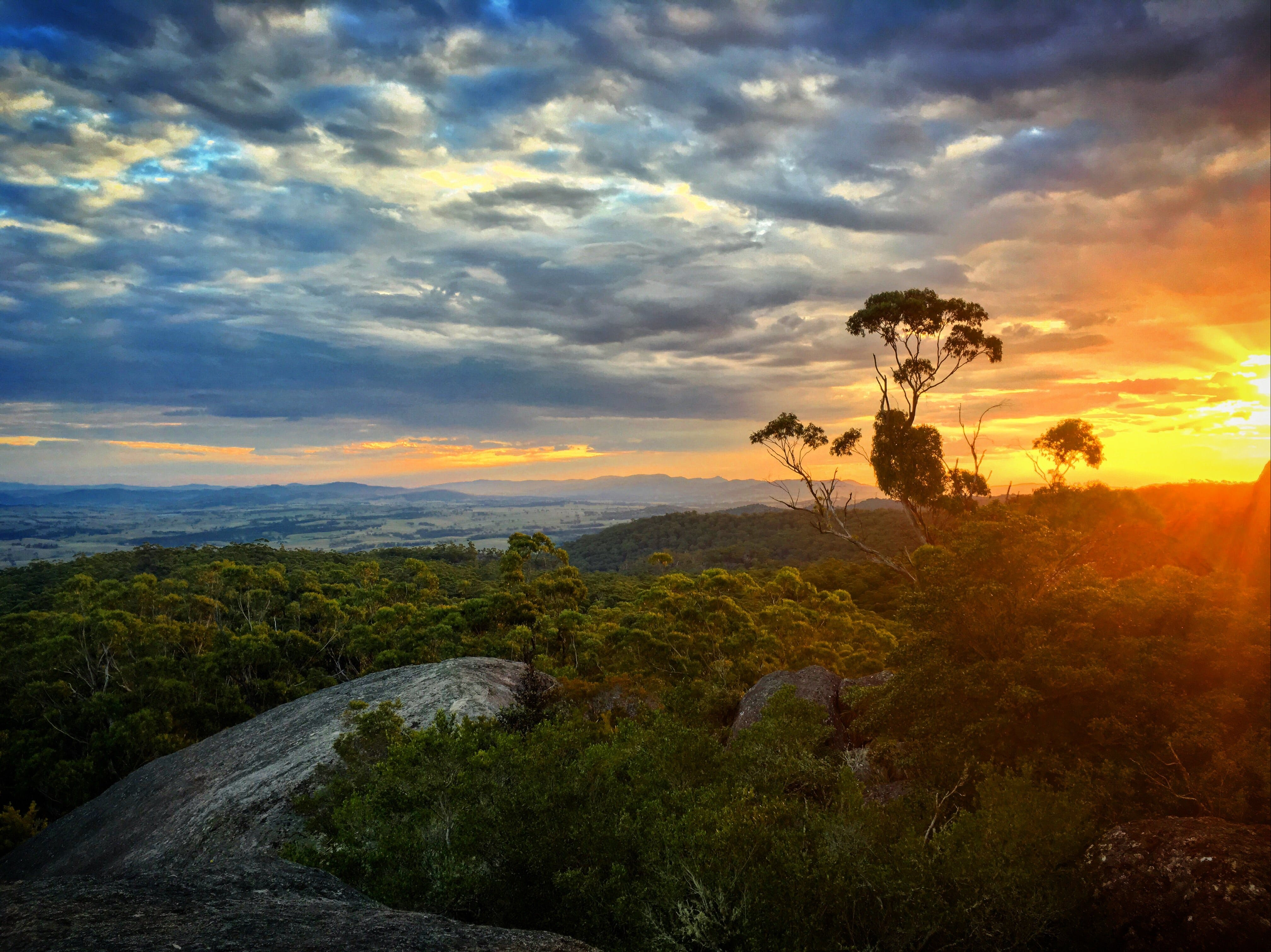 Tenterfield - Accommodation Coffs Harbour
