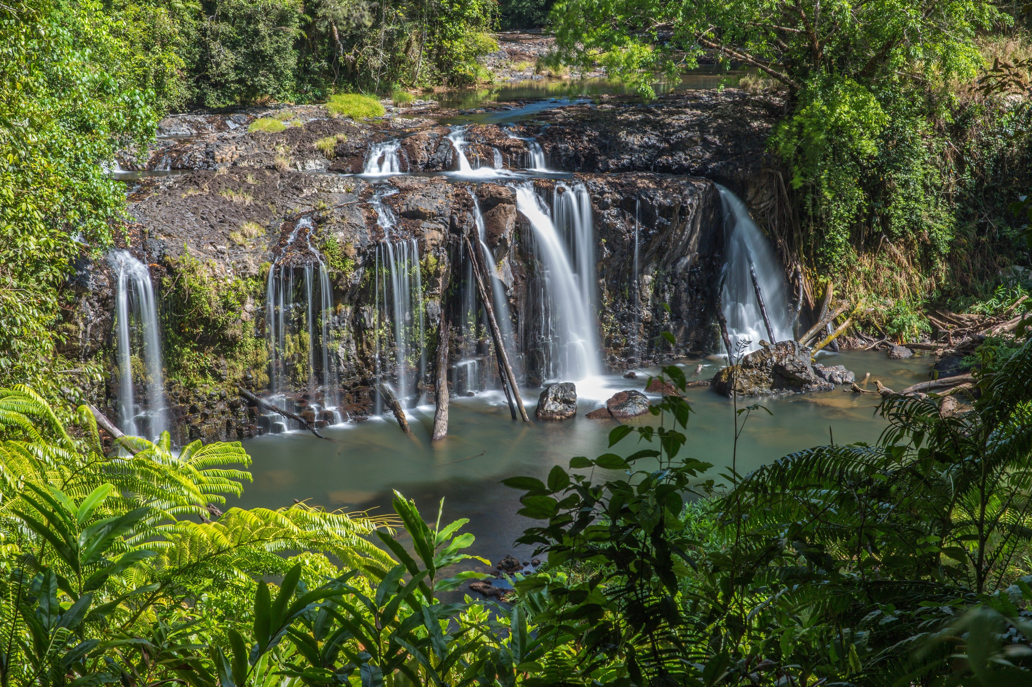 Wallicher Falls - Accommodation Coffs Harbour