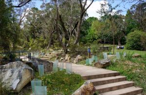 Wentworth Falls picnic area - Accommodation Coffs Harbour