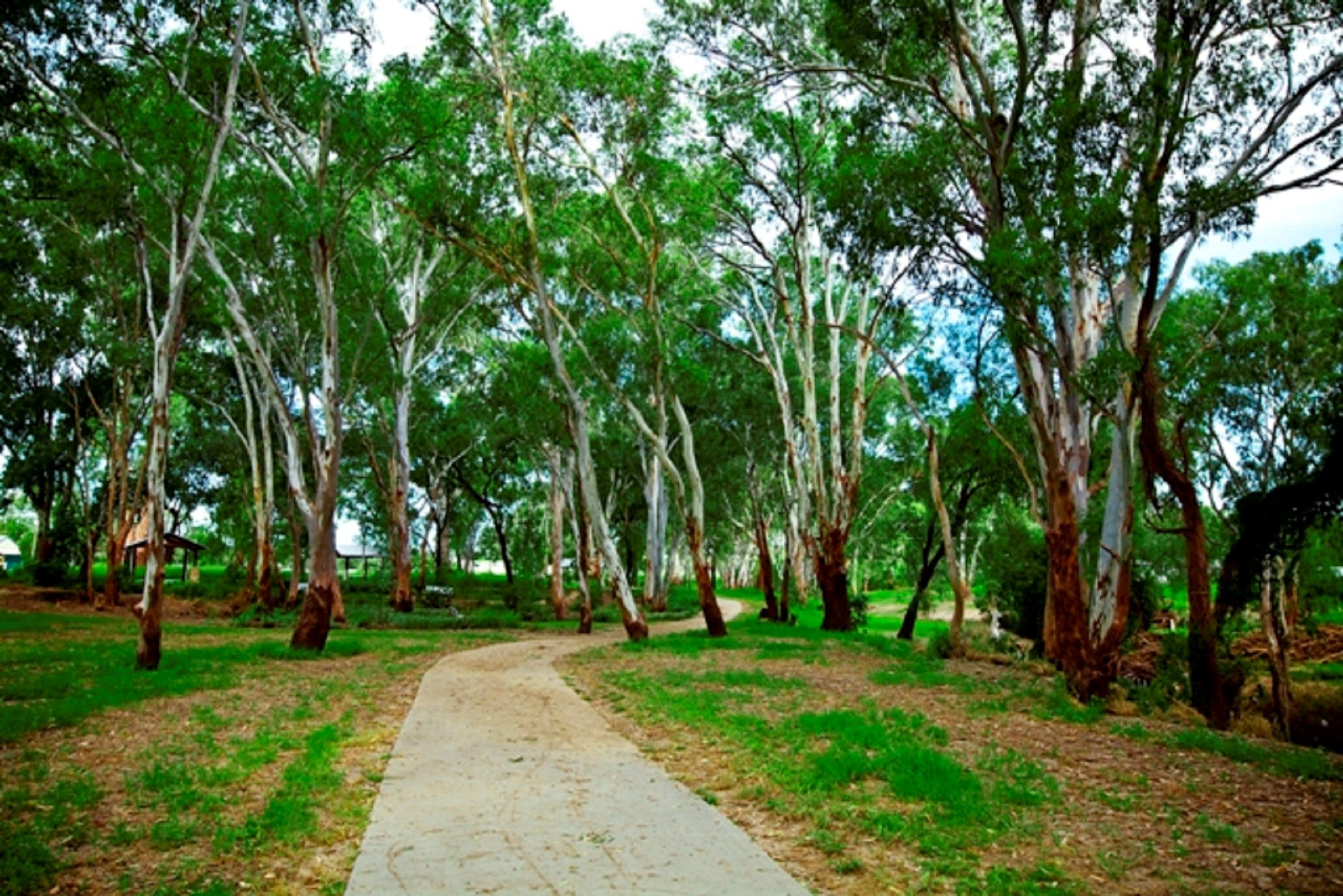 Adungadoo Pathway - Accommodation Coffs Harbour