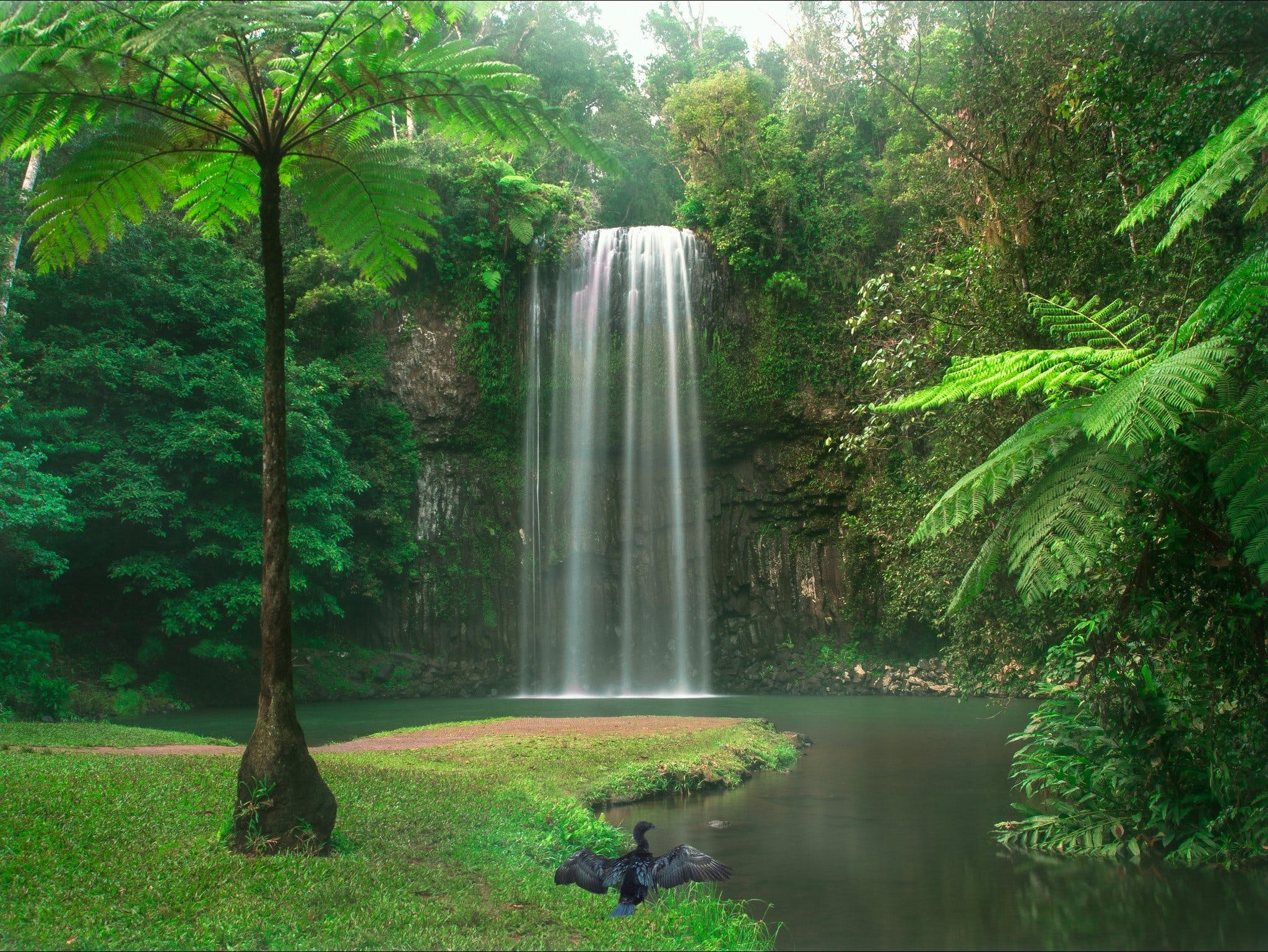 Atherton Tablelands - Accommodation Coffs Harbour