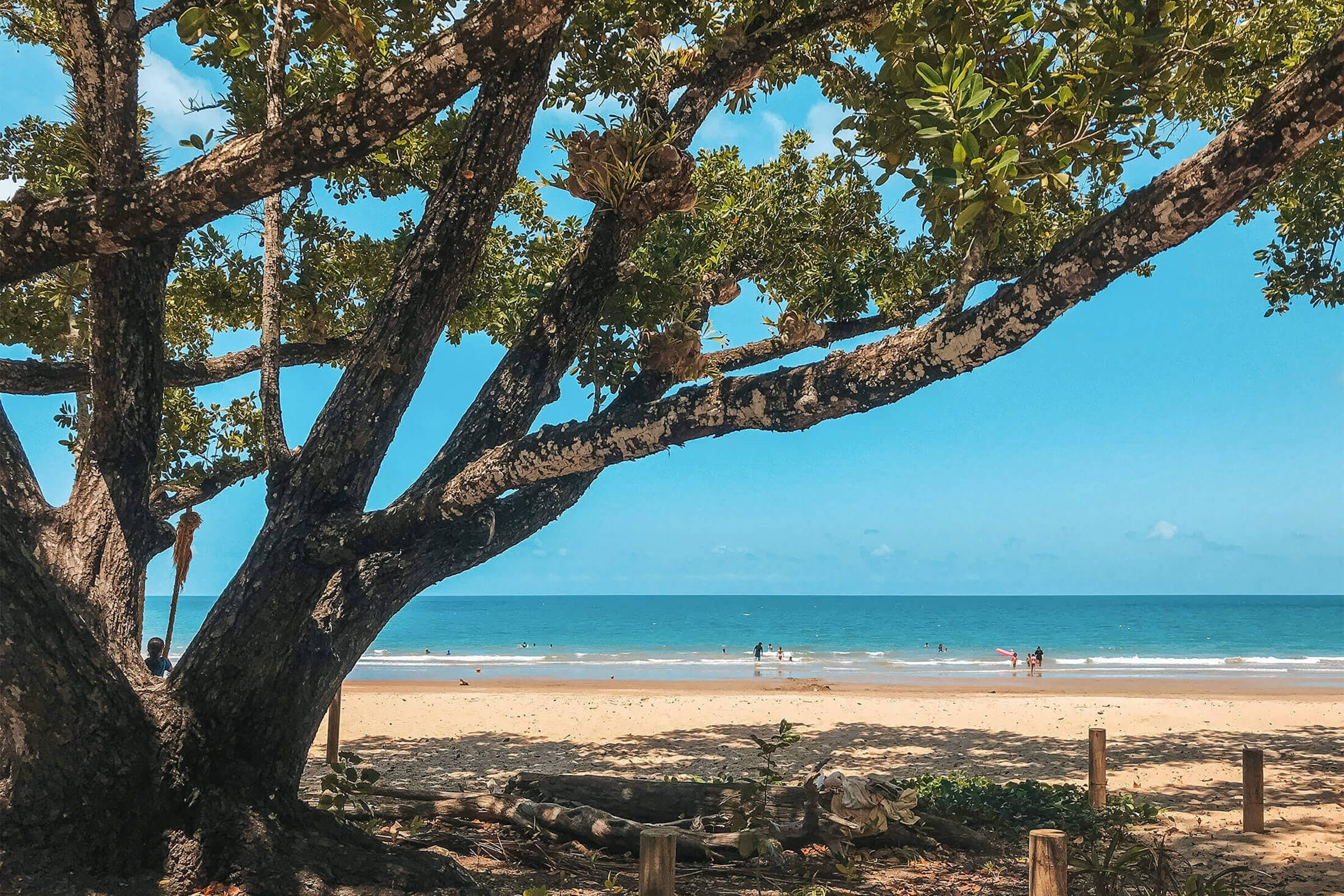 Etty Bay - Accommodation Coffs Harbour