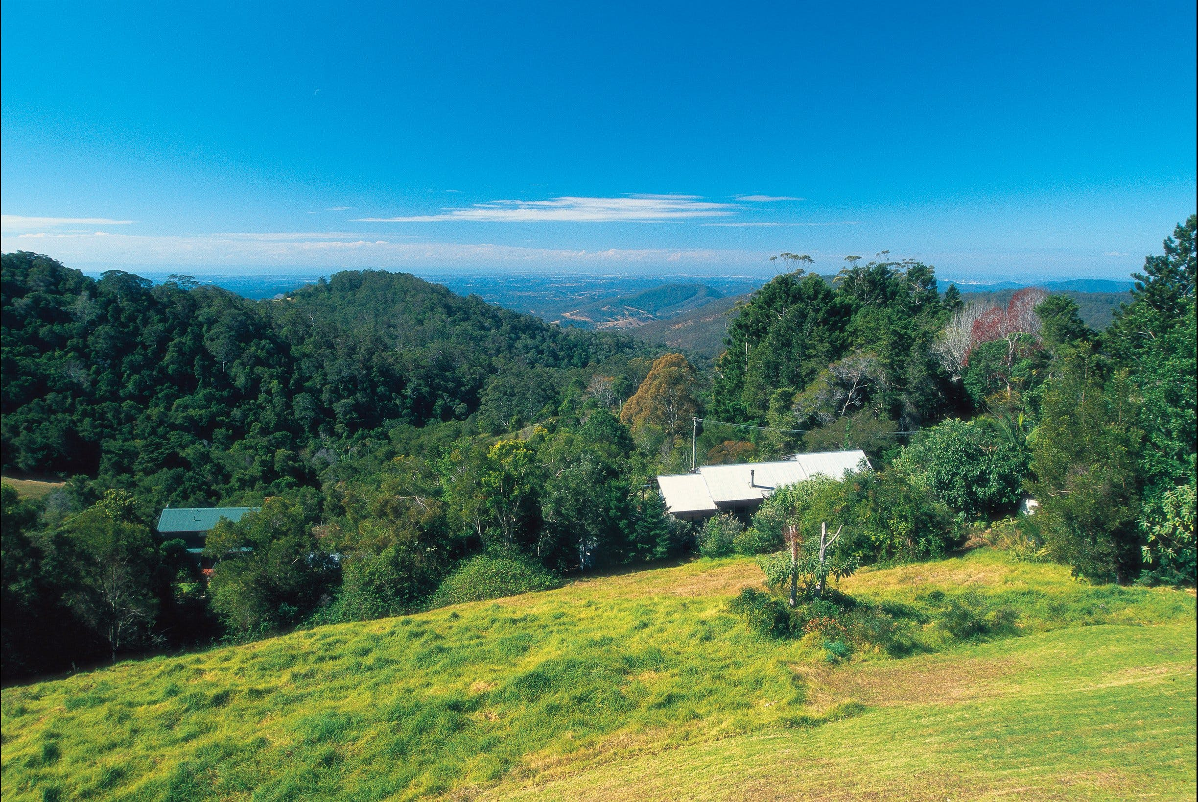 Mount Glorious - Accommodation Coffs Harbour