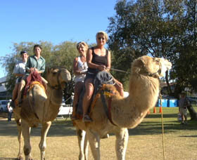 Calamunnda Camel Farm - Accommodation Coffs Harbour