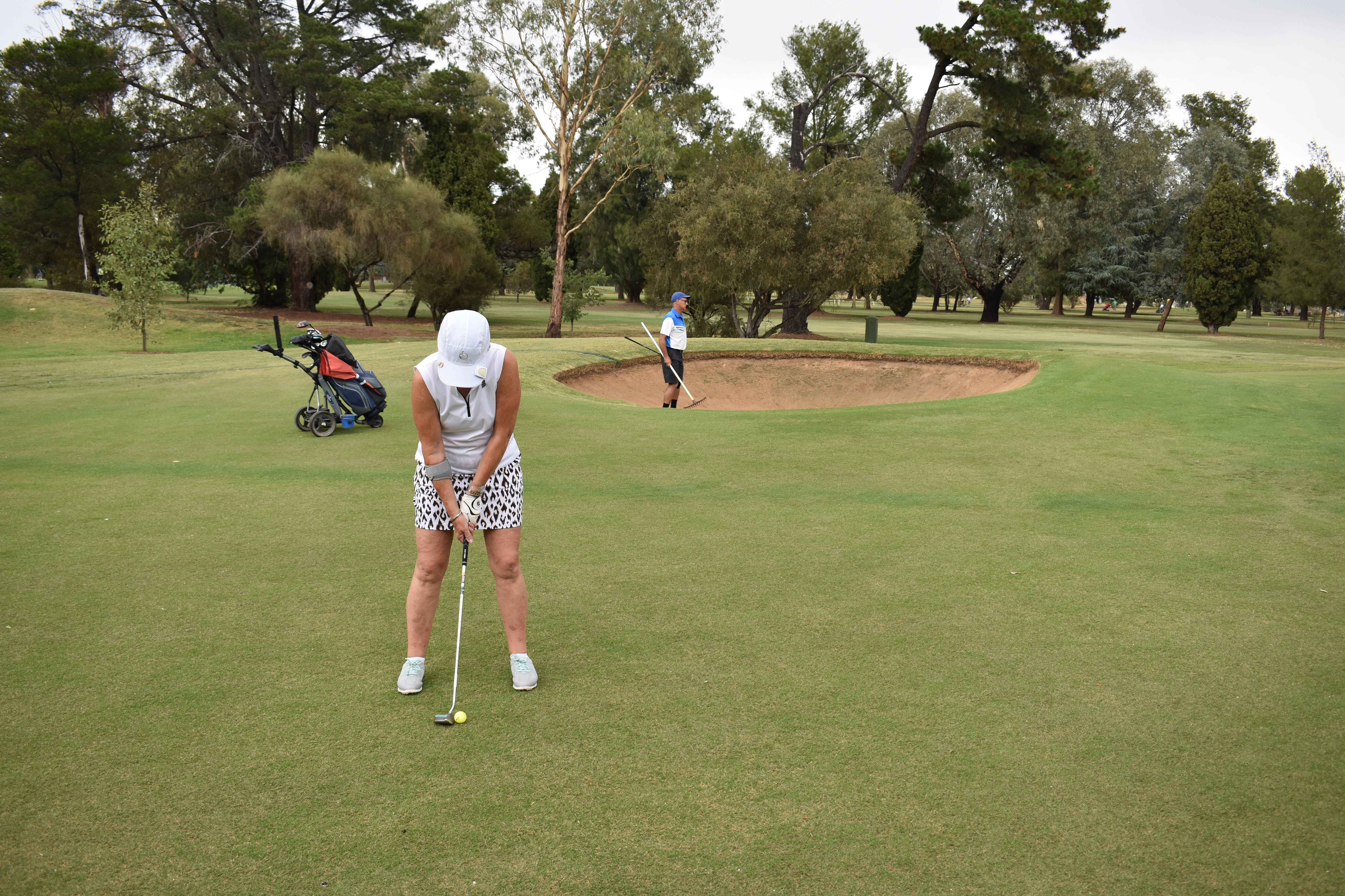 Howlong Golden Shoe Nine Hole Golf Tournament - Accommodation Coffs Harbour
