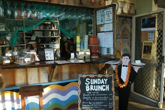 Sheoak Shack Gallery Cafe - Accommodation Coffs Harbour