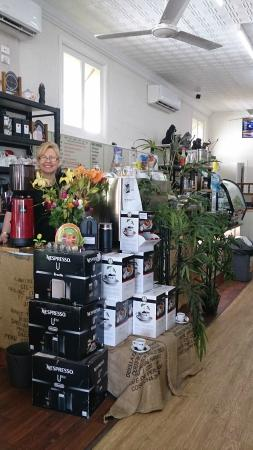 Coffee at the Park - Accommodation Coffs Harbour