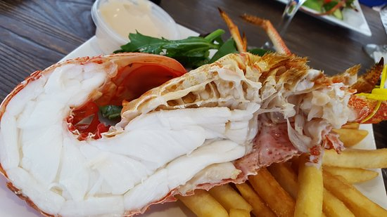Tasmanian Gourmet Seafoods - Accommodation Coffs Harbour