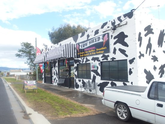 The Cow Shed - Accommodation Coffs Harbour