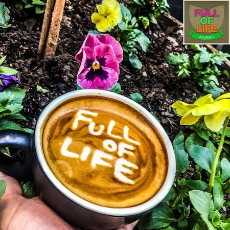 Full of Life Organics - Accommodation Coffs Harbour