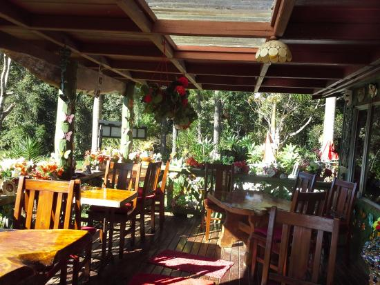 Suzannes's Hideaway Cafe - Accommodation Coffs Harbour