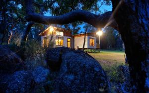 Severn-dipity - Accommodation Coffs Harbour